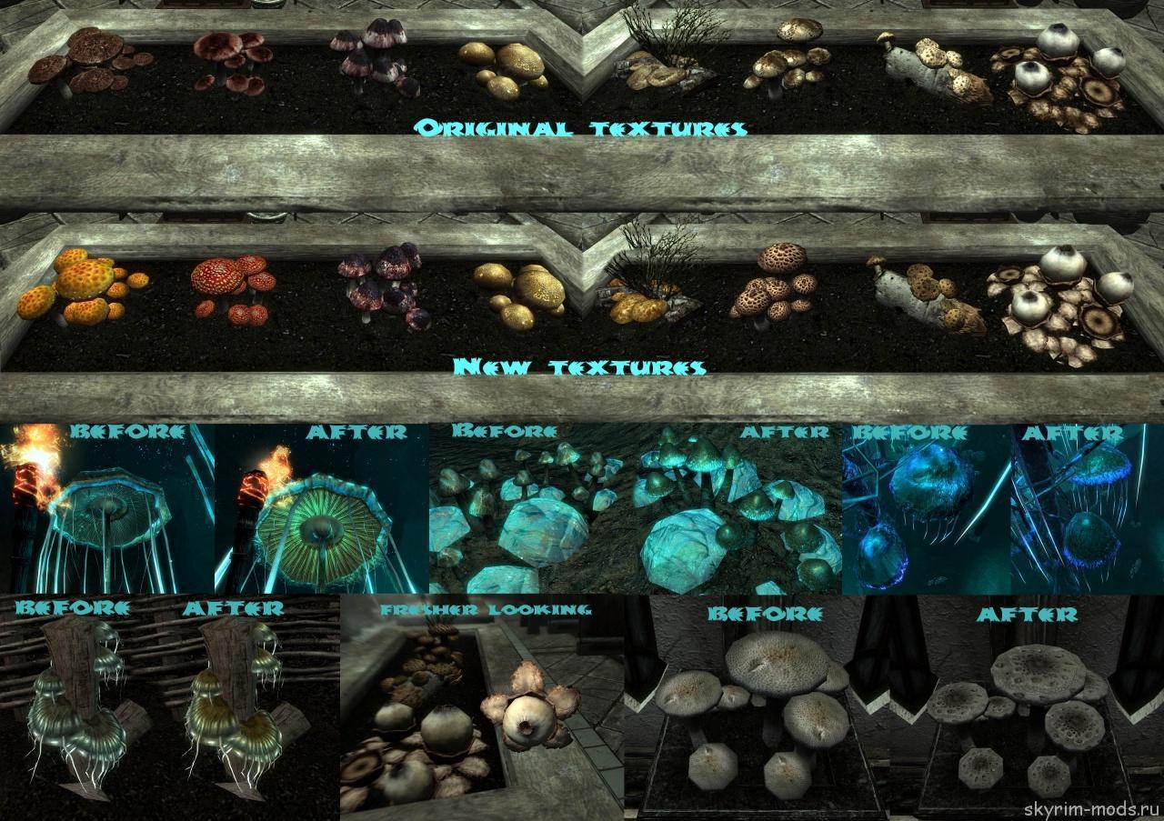 Новые текстуры для грибов
