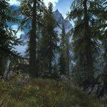 Skyrim-Flora-Overhaul