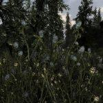 Skyrim-Flora-Overhaul-3