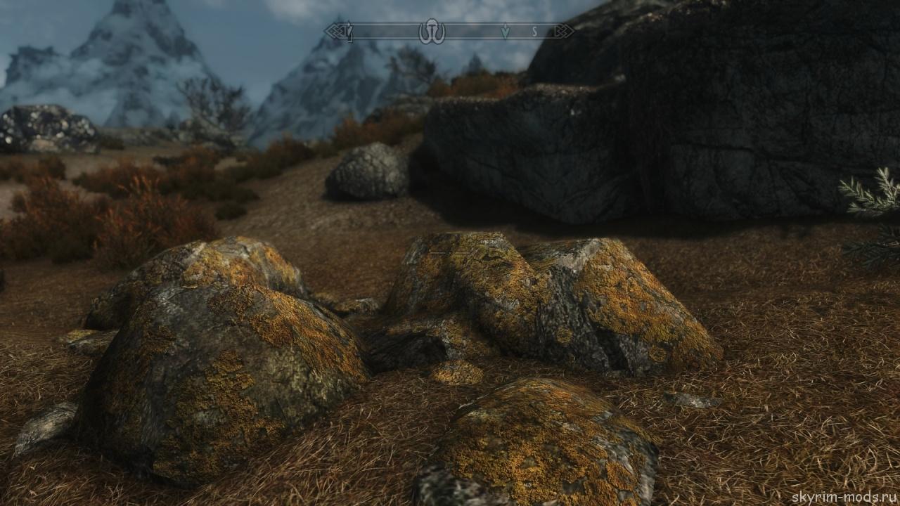 Ретекстур мха в тундре