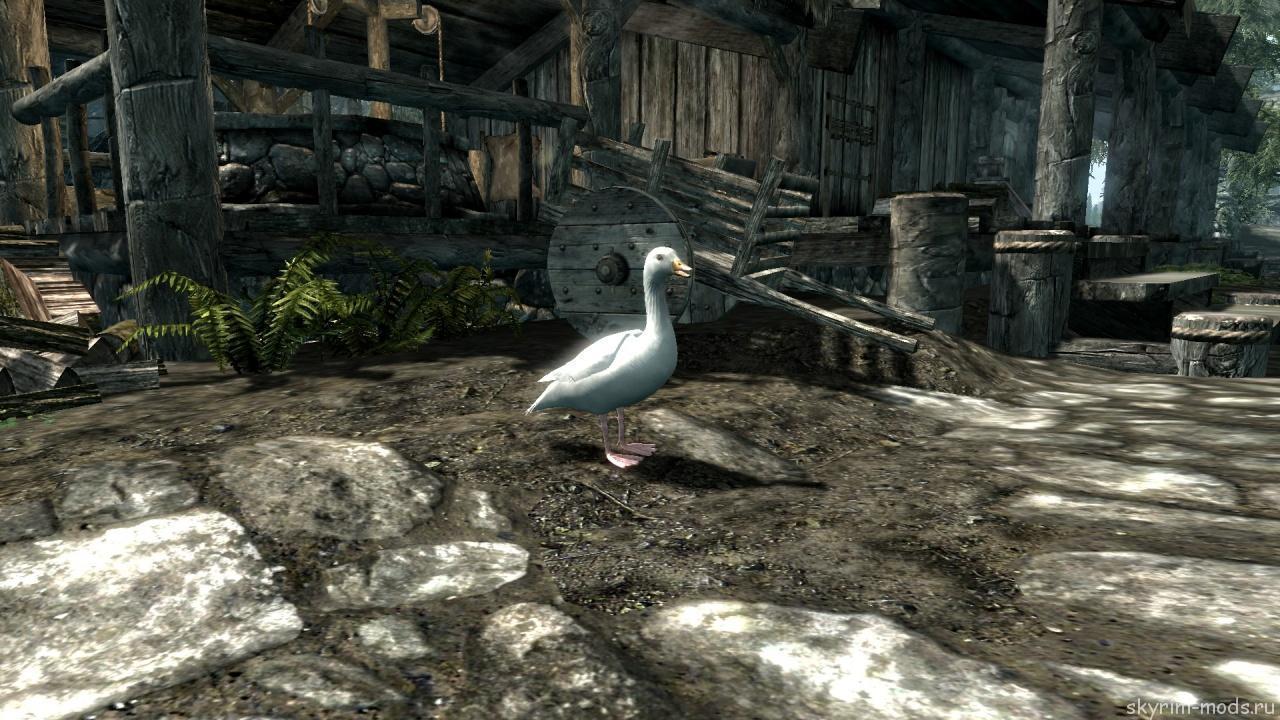 Гуси в Skyrim