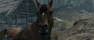 Ретекстур лошадей